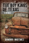 The Boy Kings of Texas poster